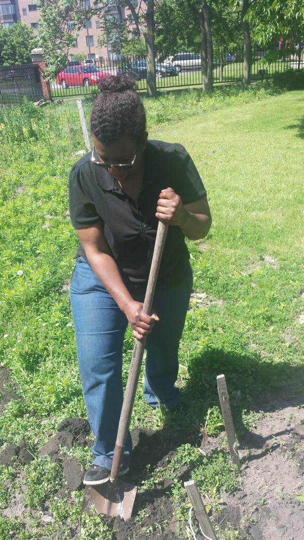 Sherry breaking ground at African Heritage Garden 2015
